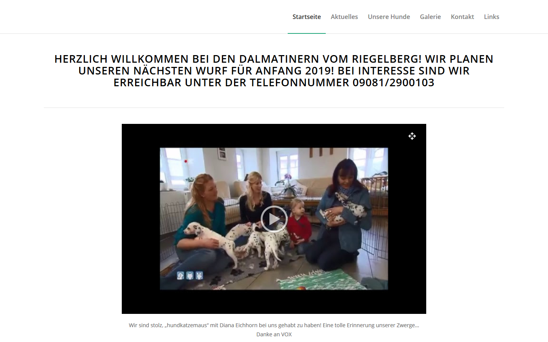 portfolio-dalmatiner-vom-riegelberg