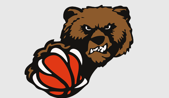 vsc-baskets-donauwoerth